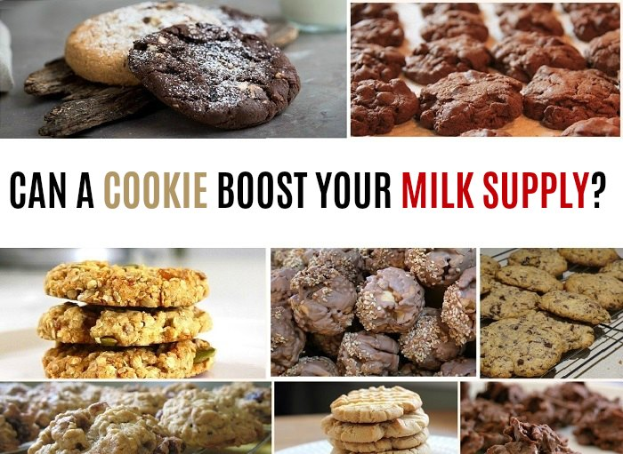Lactation cookies for a breast milk boost